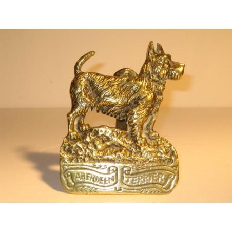 Aberdeen terrier
