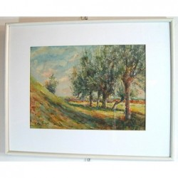 Drzewa - Baugniet